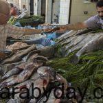 قبل شم النسيم : وزارة الزراعة تقرر ضخ الأسماك للتموين