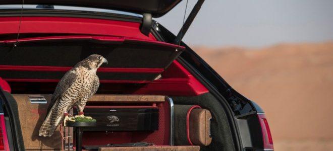 بنتلي تطلق سيارة خاصة لعشاق الصقور.. صور