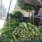 الكويت تقرر وقف استيراد المحاصيل الزراعية من مصر