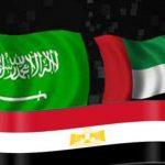 بعد قطع العلاقات مع قطر.. مصر ودول الخليج يصدرون بيانا مشترك بإدراج 59 فردًا و12 كيانًا ضمن قوائم الإرهاب