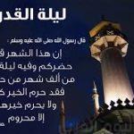 الوفد: 20 دليل يثبتوا سيادة مصر على جزيرتي تيران وصنافير