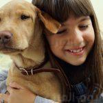 تعرف على تأثير إقتناء الحيوانات الأليفة على طفلك