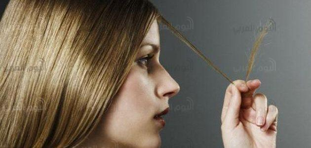 طرق طبيعية لعلاج تقصف وجفاف الشعر .. تعرف عليها