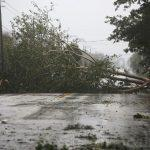 بالفيديو.. إعصار إيرما المدمر يصل فلوريدا والأهالي يحصنون منازلهم
