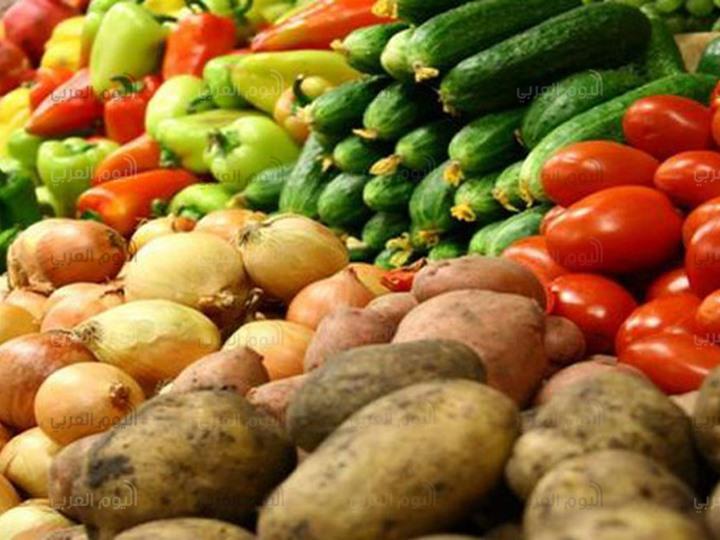 رفع الحظر عن المنتجات الزراعية المصرية