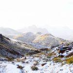 جبل اللوز يستضيف الزائر الأبيض وحكاية زواج النبي موسى.. صور مذهلة