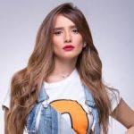 رسميًا.. نيابة  دبي تتهم الفنانة زينة بالاعتداء على طفلة أمريكية