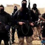 إسلام نجم الدين يكتب : صناعة الإرهابي و كيفية التعامل معه